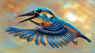 Kingfisher : Live HD Kingfisher Wallpapers, Photos