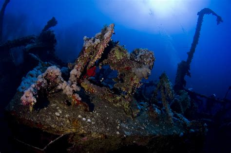 Dive Site: The Brothers Islands, Egypt • Scuba Diver Life
