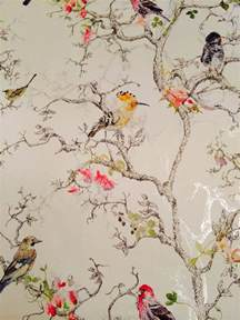 wallpaper birds I love this one! tapéta Pinterest Love