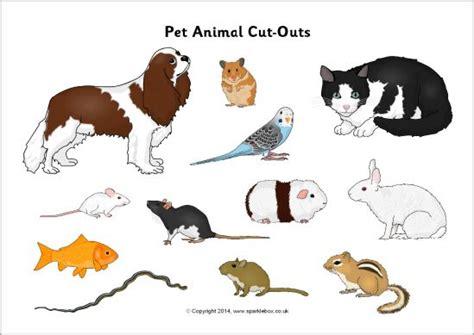 Pet animal cut outs SparkleBox Sort into different habitats SLP Language Pinterest Pet