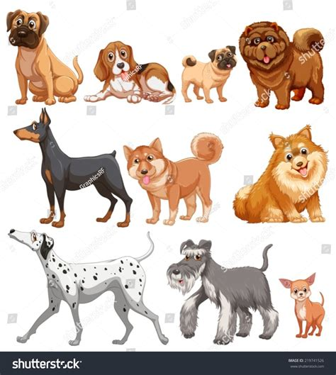 Illustration Different Kind Dogs Stock Vector 219741526