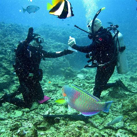 Couples Private Scuba Diving at Pondicherry Weekend Thrill