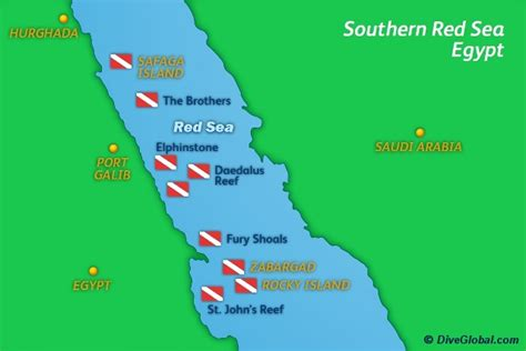 The Red Sea Scuba Diving Reviews