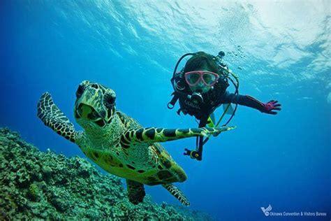 Diving Spots VISIT OKINAWA JAPAN
