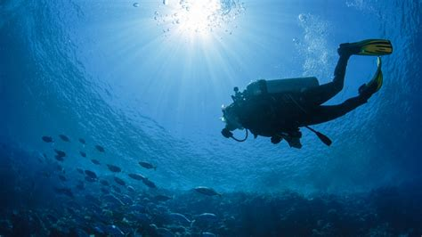 Scuba Diving Courses: Where Can I Learn To Dive In The UK