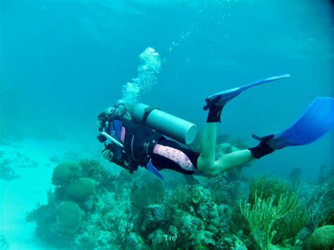 Marine Expedition and PADI Divemaster Dive Center