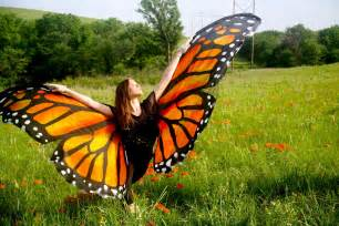 Wild for Monarchs Butterflys Wild Ones Butterfly
