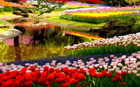 Garden Wallpapers Best Wallpapers
