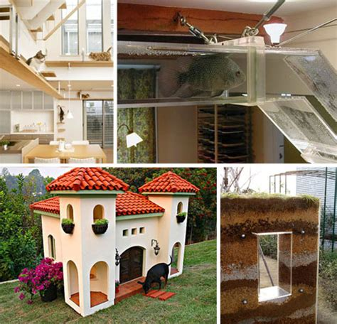 Out of the Dog House: 25 Awesome Pet Homes & Habitats