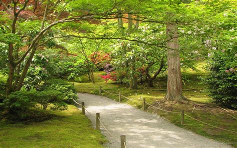 Japanese Garden Wallpaper Backgrounds WallpaperSafari