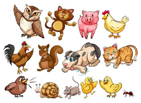 Different type of farm animal and pet illustration Vector