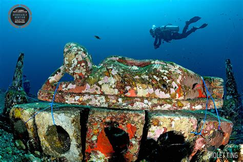 Tulamben Suci's Place is The Best Diving Bali Spot