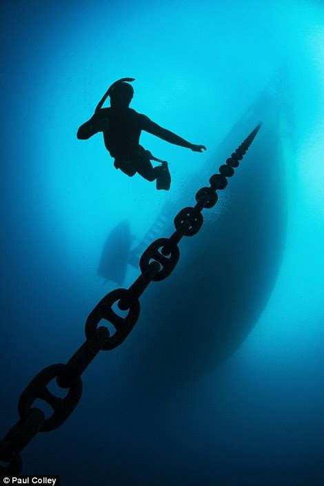 Photographer Terry Steeley wins global underwater