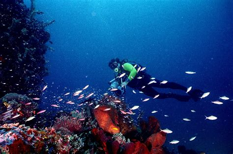 The Best Snorkeling and Diving Spots in Indonesia