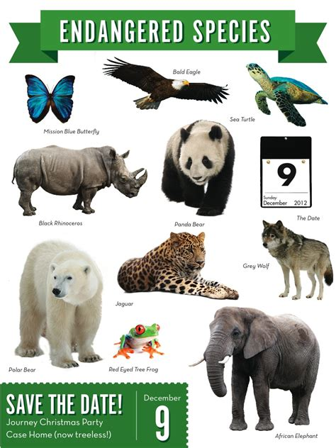 Save the Date! Endangered Species Nineteen99 Pinterest Endangered species, Animals and