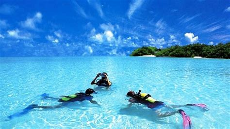 Top 10 Scuba Diving Destinations Technology Vista