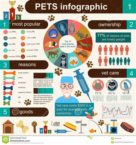 Domestic Pets Infographic Elements, Helthcare, Vet Stock