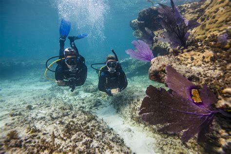 Is Scuba Diving Safe?
