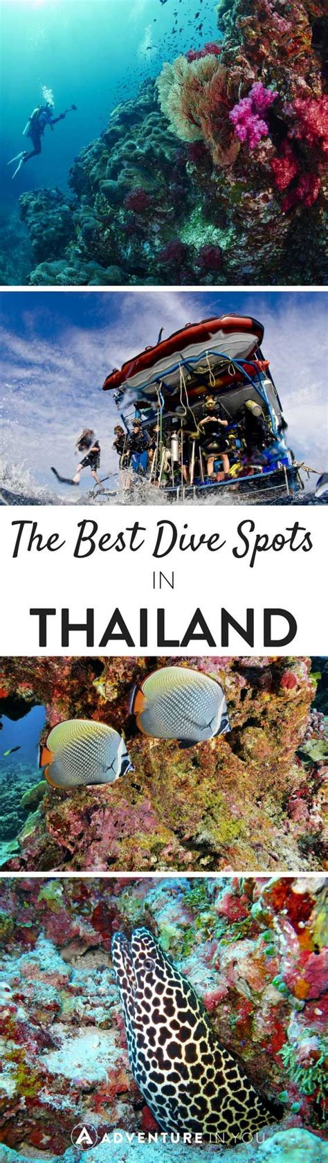 Best Scuba Diving in Thailand: Dive Sites You Just Can't