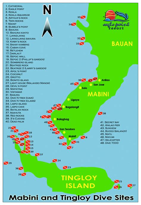 Diving Packages Anilao Diving Beach Resort