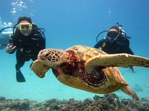 Top 10 Best Diving Places