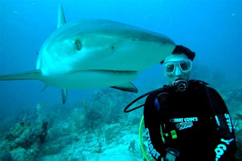 How Safe is My Scuba Diving Friend While Diving