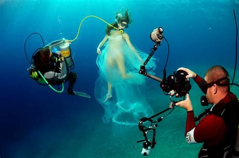 Top Underwater Photography Project 4 Gallery