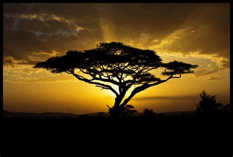 Africa Landscape 28 by hesitation on DeviantArt