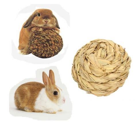 Pet Hamster Rabbit Grass Ball Toy Mice Gerbil Mini Animal