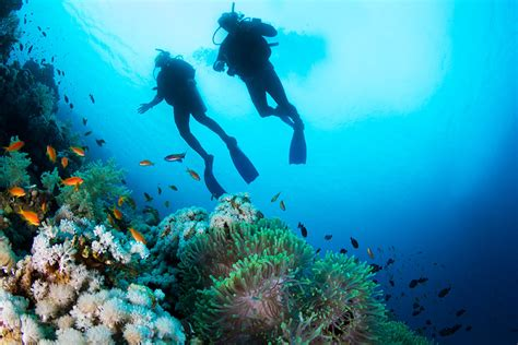 Adventure Travel Vacations Diving, Adventure, & Wellness