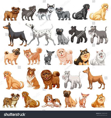 Different Type Dogs Small Big Stock Vector 259835399 Shutterstock
