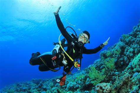 Life Insurance for Scuba Divers InsureChance