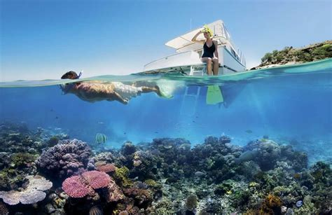 Top 10 Best Dive Spots in the World