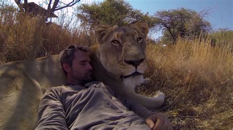 Man Tries to Hug a Wild Lion, You Wont Believe What