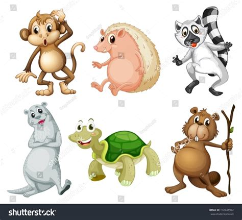 Illustration Six Different Kinds Wild Animals Stock Vector