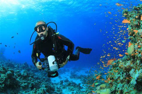 underwater videographer enjoys spectacular sceneryjpg
