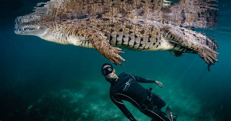 10 Best Freediving Destinations (Plus Awesome Photos