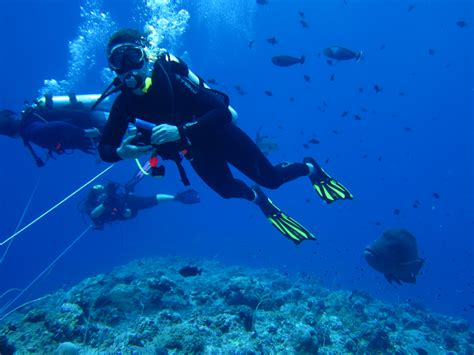 Palau Diving; It Does Not Have to Be Intimidating