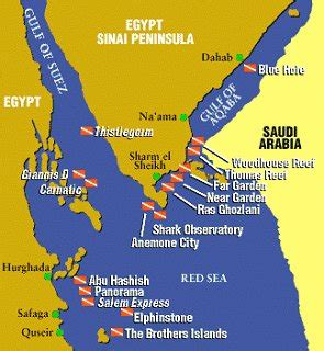 Red sea dive sites Amazing dive Resorts/sites