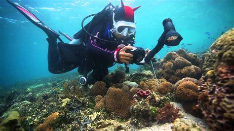 SeaLife Underwater Cameras Diving Indonesia with SeaLife