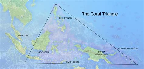 The Coral Triangle Asian Development Bank