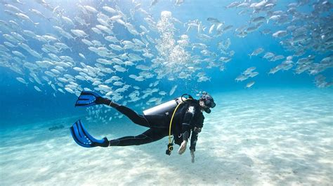 10 top Scuba Diving Spots in South East Asia PickYourTrail