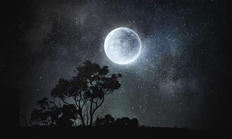 Moonlight Reperimenti image 7