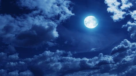 Moonlight Reperimenti image 5